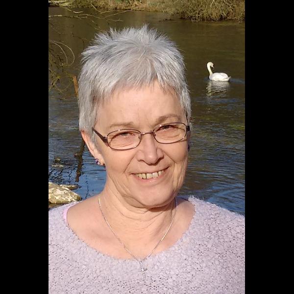 Linda Stepney 2017